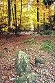 Kounov kamenné řady 2.jpg