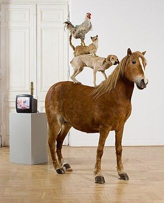 Katarzyna Kozyra -  Pyramid of Animals, 1993, Zachęta National Gallery of Art.