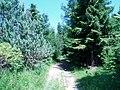 Kyjov 2006-07-05 14-29-50 0062 - panoramio.jpg
