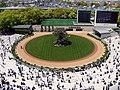 Kyoto racecourse paddock.jpg