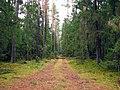 Līksna Parish, LV-5456, Latvia - panoramio (6).jpg
