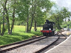 LSWR O2 Class W24 Calbourne - W24 Calbourne, painted in BR lined black, at Smallbrook Junction, Isle of Wight Steam Railway, May 2015