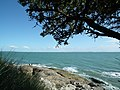 La côte à Saint-Palais - panoramio (6).jpg