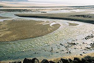 Ambleteuse - The Slack River estuary
