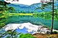 Lac de Retournemer.(3).jpg