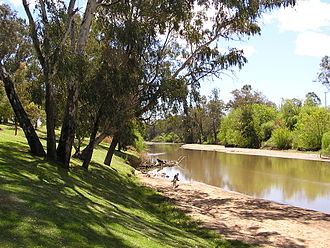 Lachlan River - The Lachlan River at Cowra