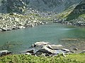 Lacul Lung - panoramio.jpg