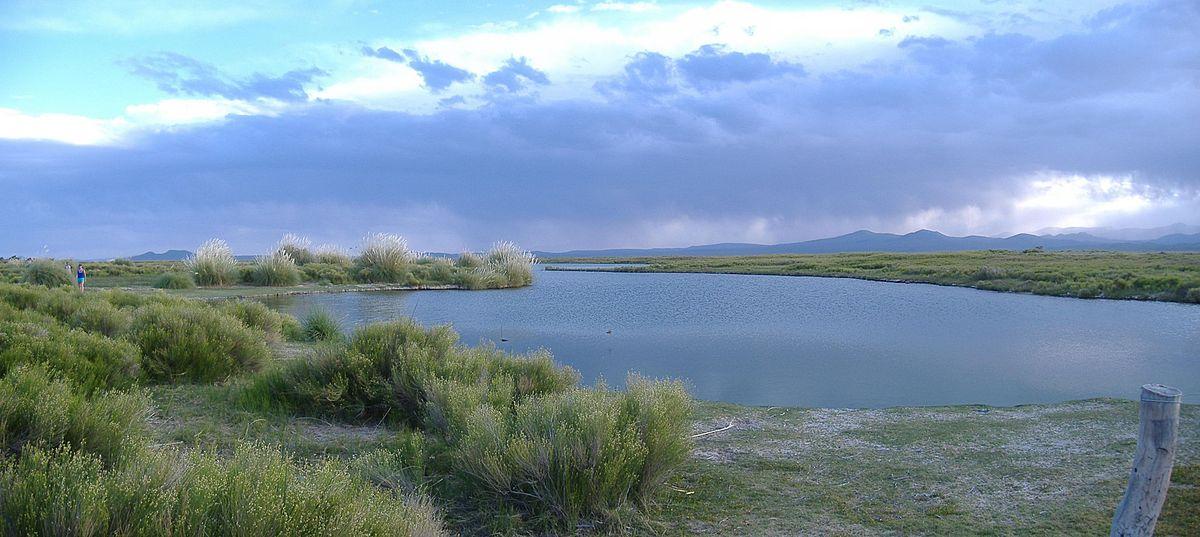 Patagonia South America >> Llancanelo Lake - Wikipedia