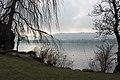 Lake Zurich - panoramio (1).jpg