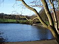 Lake in Beveridge Park, Kirkcaldy - geograph.org.uk - 332087.jpg