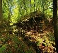Landschaftsschutzgebiet Nagoldtal (8 Teilgebiete), Kennung 2.35.037, Lützengraben, Wildberg 01.jpg