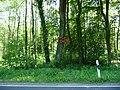 Landschaftsschutzgebiet Wiedebrocksheide Gesmold Melle Datei 12.jpg
