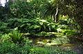 Le jardin Delaselle - Ile de Batz 2.JPG