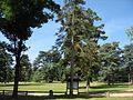 Le parc de Givray, site naturel boisé de Ligugé.jpg