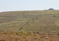 Leat and boundary below Trowlesworthy Tor.jpg