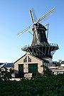 Leiden molen d'Heesterboom vanaf de weg.jpg
