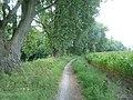 Leine Radweg - panoramio (1).jpg