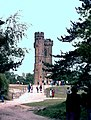Leith Hill Tower - geograph.org.uk - 1591481.jpg