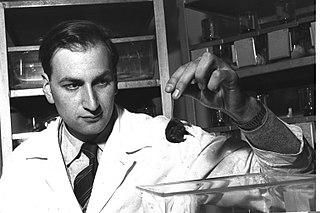 Leo Sachs Israeli molecular biologist (1924–2013)