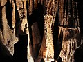 Limestone formation in Mammoth Cave.jpg