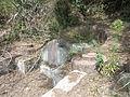 Lingshan Islamic Cemetery - tomb - DSCF8469.JPG