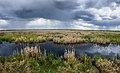 Lister Lake (14101585598).jpg