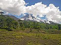 Llaima Volcano with vegetation.jpg