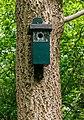 Locatie, Hortus (Haren, Groningen). Vogelhuisje.jpg