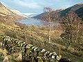 Loch Doine, Loch Voil beyond - geograph.org.uk - 346866.jpg