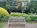 Long shot of the bench (OpenBenches 8284-1).jpg