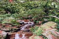 Longwood 2011 09 02 0481 (6160384541).jpg
