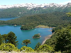 Looking out over Lago Conguillio