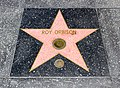 Los Angeles (California, USA), Hollywood Boulevard, Roy Orbison -- 2012 -- 4988.jpg