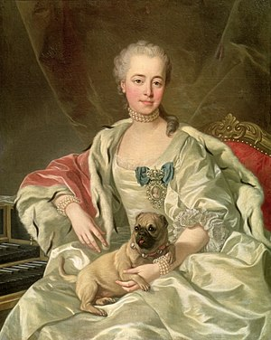 Pug -  A portrait of Princess Ekaterina Dmitrievna Golitsyna by Louis-Michel van Loo (1759) Moscow, Pushkin Museum of Fine Arts