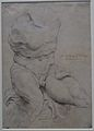 Louvre-Lens - L'Europe de Rubens - 161 - Le Torse du Belvédère.JPG