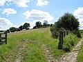 Lower slopes of Eastnor Hill - geograph.org.uk - 519352.jpg