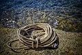 Lugares mágicos del Cabo de Gata 18, detalle.jpg