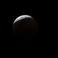 Lunar eclipse nearing maximum (41869598590).jpg