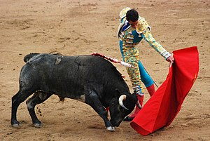 Red - Bulls, like dogs and many other animals, have dichromacy, which means they cannot distinguish the color red. They charge the matador's cape because of its motion, not its color.