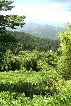 Gifu (prefecture)