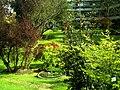 Mai - Botanischer Garten Freiburg - 2016 - panoramio (4).jpg