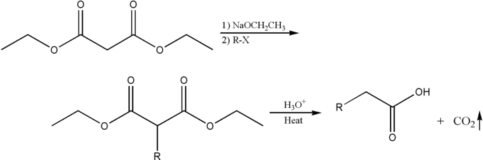 Malonicestersynthesis.png