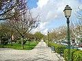 Mangualde - Portugal (121807334).jpg