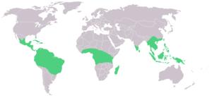 Vanilla (genus) - Image: Map Vanilla