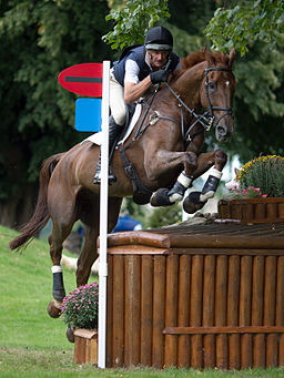 Mark Todd Major Milestone Dairy Farm Burghley 2010