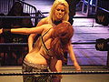 Maryse vs Maria - Diva's match.jpg