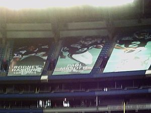 Paul Masotti - Masotti's banner hangs in Rogers Centre