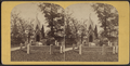 Mausoleum, Greenwood Cemetery, from Robert N. Dennis collection of stereoscopic views.png