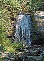 Meigs Falls & Thunderhead Sandstone (Neoproterozoic; Great Smoky Mountains, Tennessee, USA) 3 (36196492393).jpg