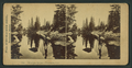 Merced River, Yosemite, Cal, from Robert N. Dennis collection of stereoscopic views.png